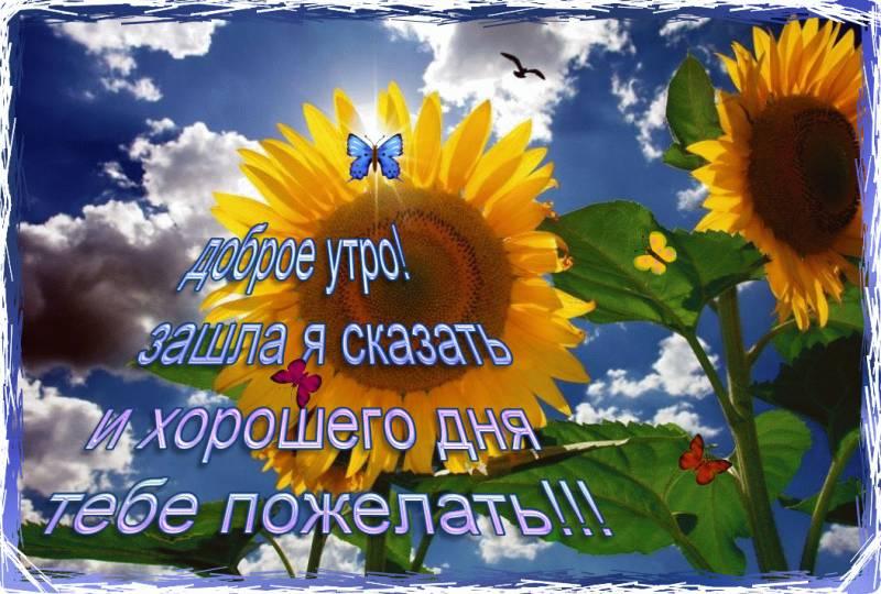 http://miranimashek.ucoz.ru/_ph/109/2/200973620.jpg