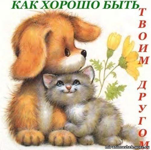Фото Картинки про дружбу, анимация и картинки Картинки про дружбу