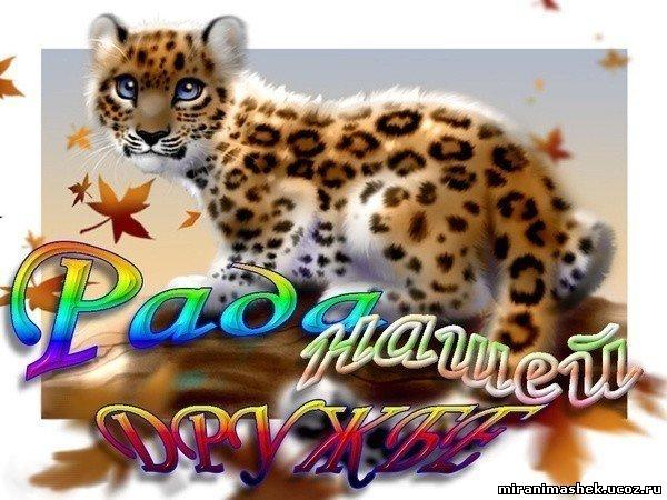 http://miranimashek.ucoz.ru/_ph/132/2/818723226.jpg