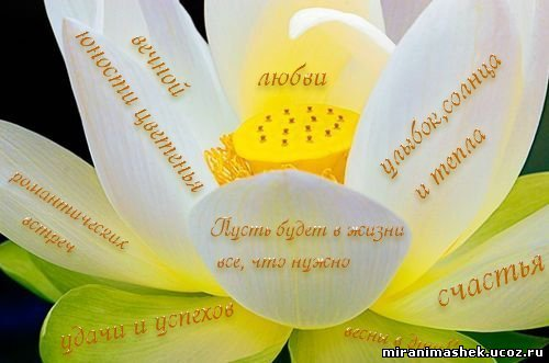 http://miranimashek.ucoz.ru/_ph/134/2/489059950.jpg