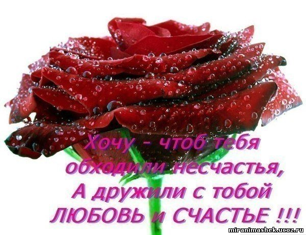 http://miranimashek.ucoz.ru/_ph/134/2/864835822.jpg