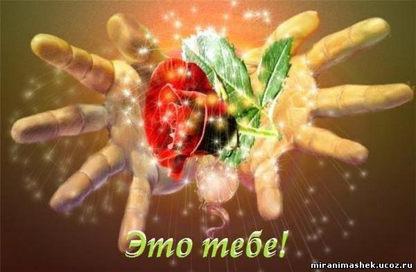 http://miranimashek.ucoz.ru/_ph/142/2/598713191.jpg