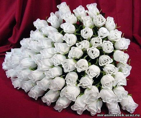 http://miranimashek.ucoz.ru/_ph/206/2/1044823.jpg