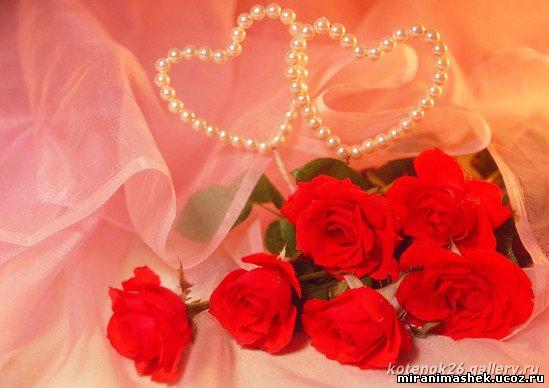 http://miranimashek.ucoz.ru/_ph/206/2/206176222.jpg
