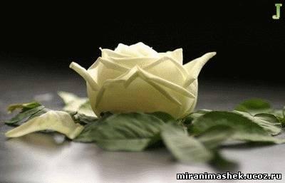http://miranimashek.ucoz.ru/_ph/206/2/338679002.jpg