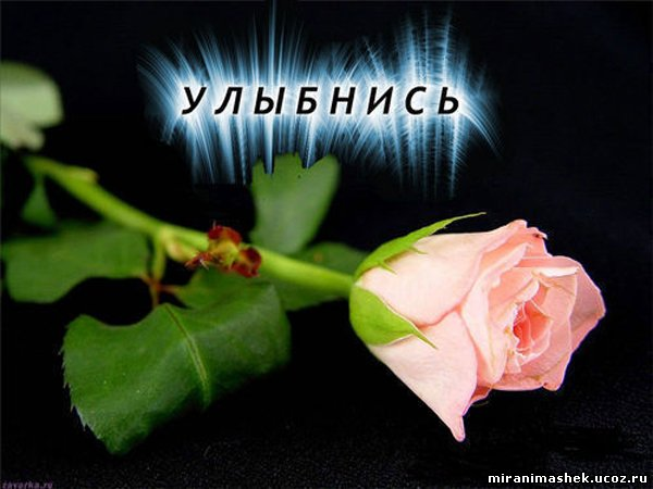 http://miranimashek.ucoz.ru/_ph/206/2/379374103.jpg