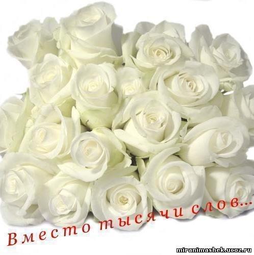 http://miranimashek.ucoz.ru/_ph/206/2/402951844.jpg