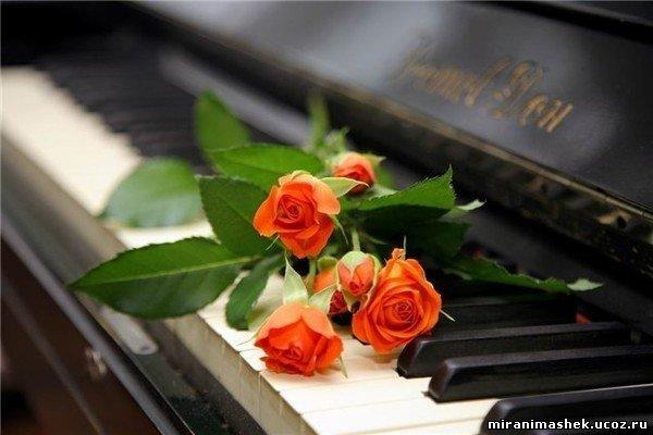 梦中的婚礼—钢琴曲