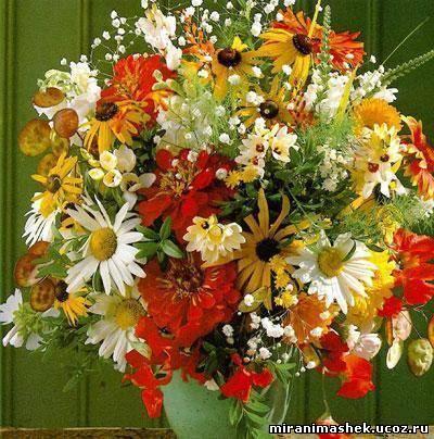 http://miranimashek.ucoz.ru/_ph/206/2/909723612.jpg