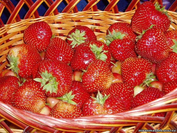 ФотоЯгоды, фрукты, анимация и картинки Ягоды, фрукты