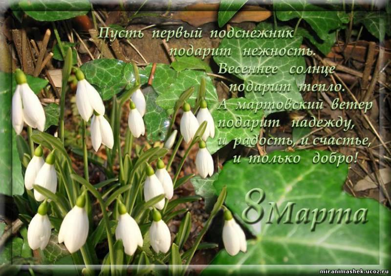 http://miranimashek.ucoz.ru/_ph/232/2/791668336.jpg
