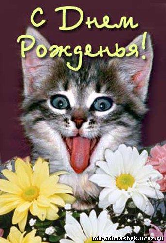 http://miranimashek.ucoz.ru/_ph/237/2/616536136.jpg