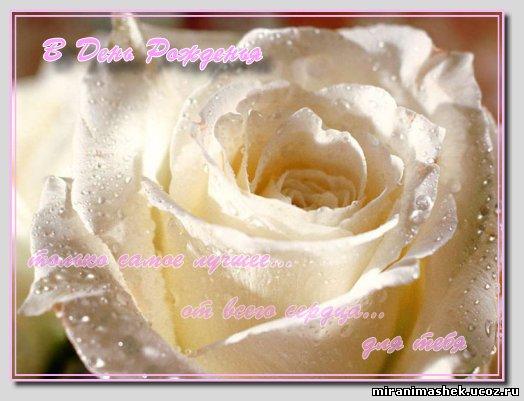 http://miranimashek.ucoz.ru/_ph/237/2/840575018.jpg