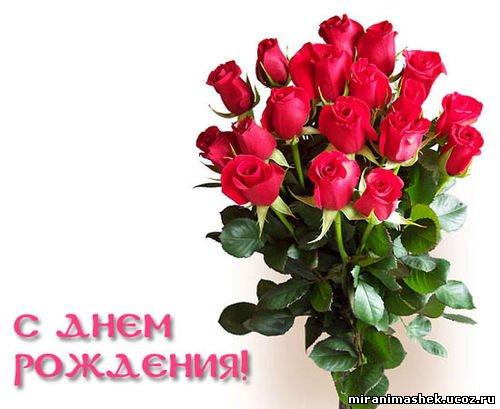 http://miranimashek.ucoz.ru/_ph/237/2/93077558.jpg