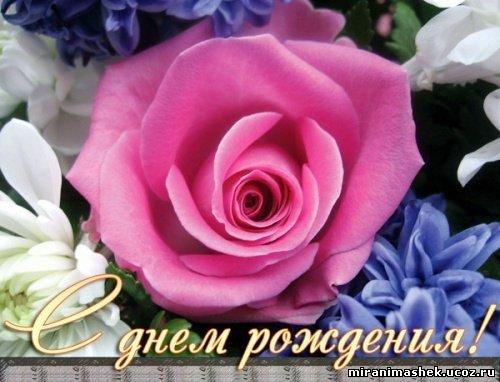 http://miranimashek.ucoz.ru/_ph/237/2/986910017.jpg