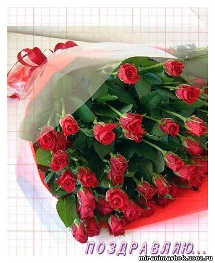 http://miranimashek.ucoz.ru/_ph/240/2/809402012.jpg